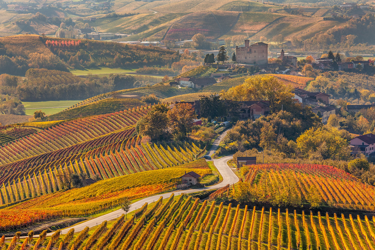 Colourful_Autumn_Vineyards_Northern_Italy_ExpatExplore