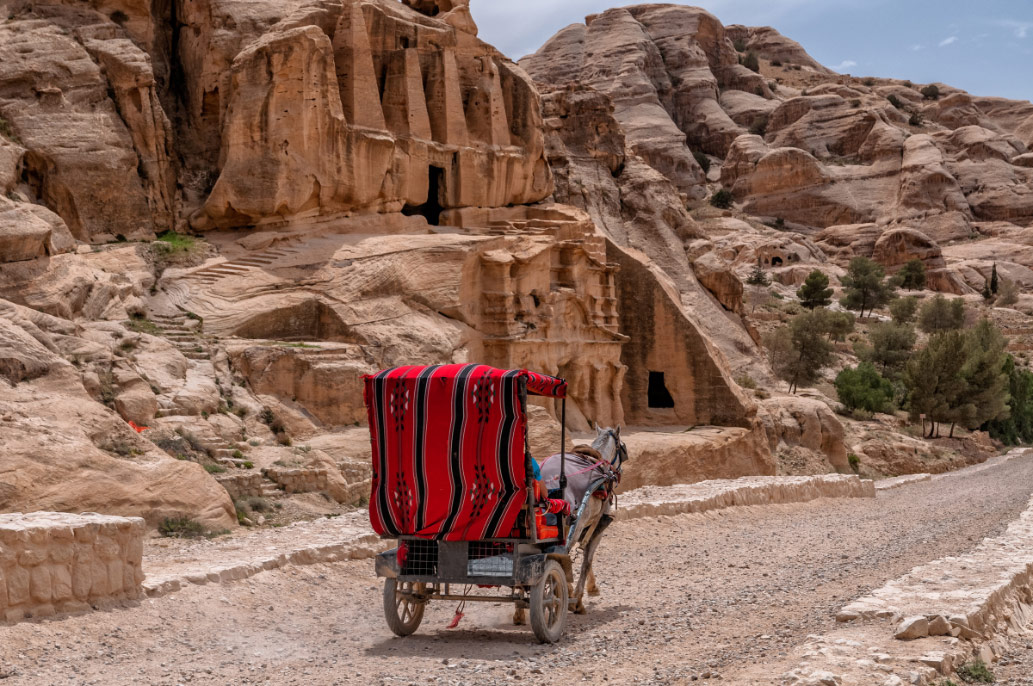 Traditional carriage transport, carrying travellers to Petra, Jordan.