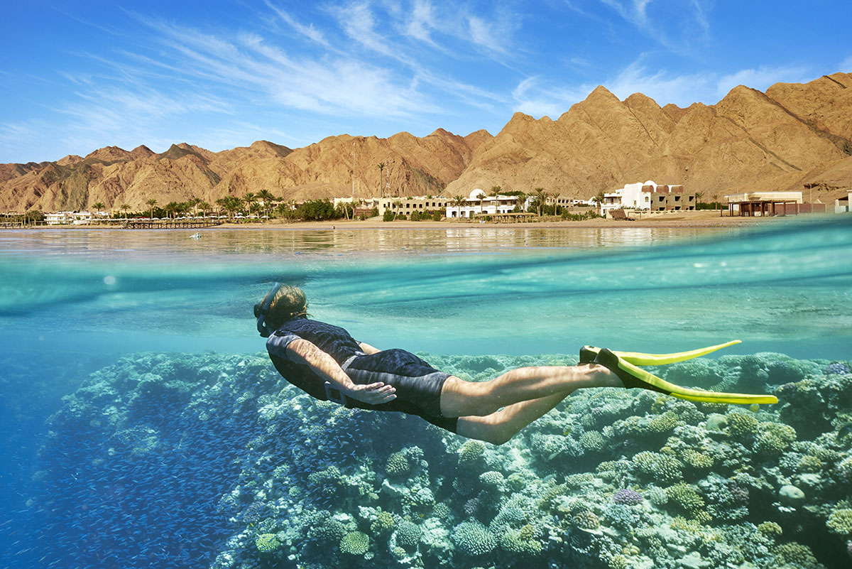 Snorkeling in the Red Sea - Egypt tour - Expat Explore