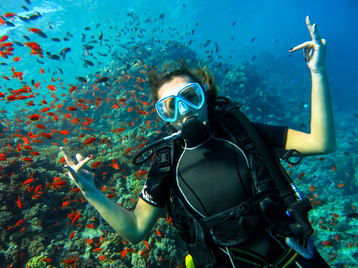 Red Sea Scuba sessions, Egypt