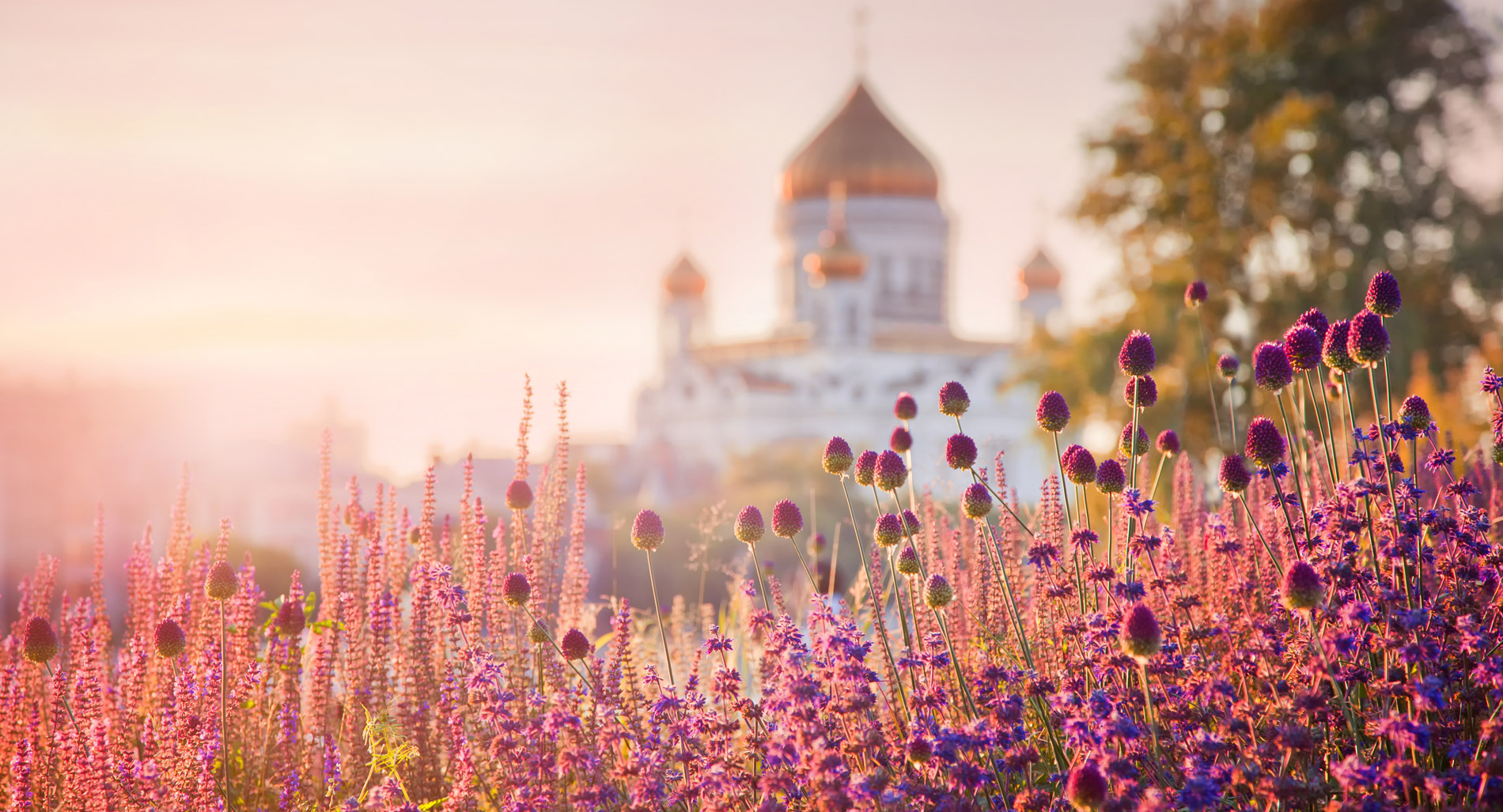 Cathedral of Christ Savior, Moscow, Russia