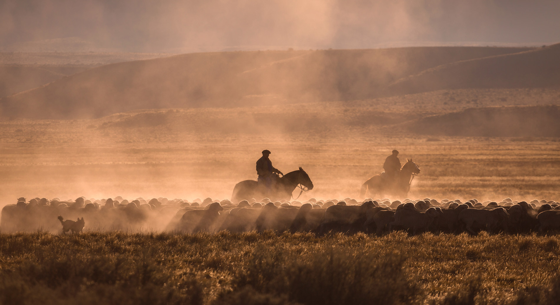 Get the full cowboy experience in Estancia just outside of Buenos Aires