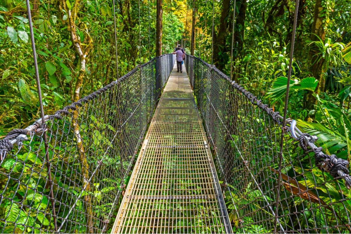 Arenal Volcano hanging bridge