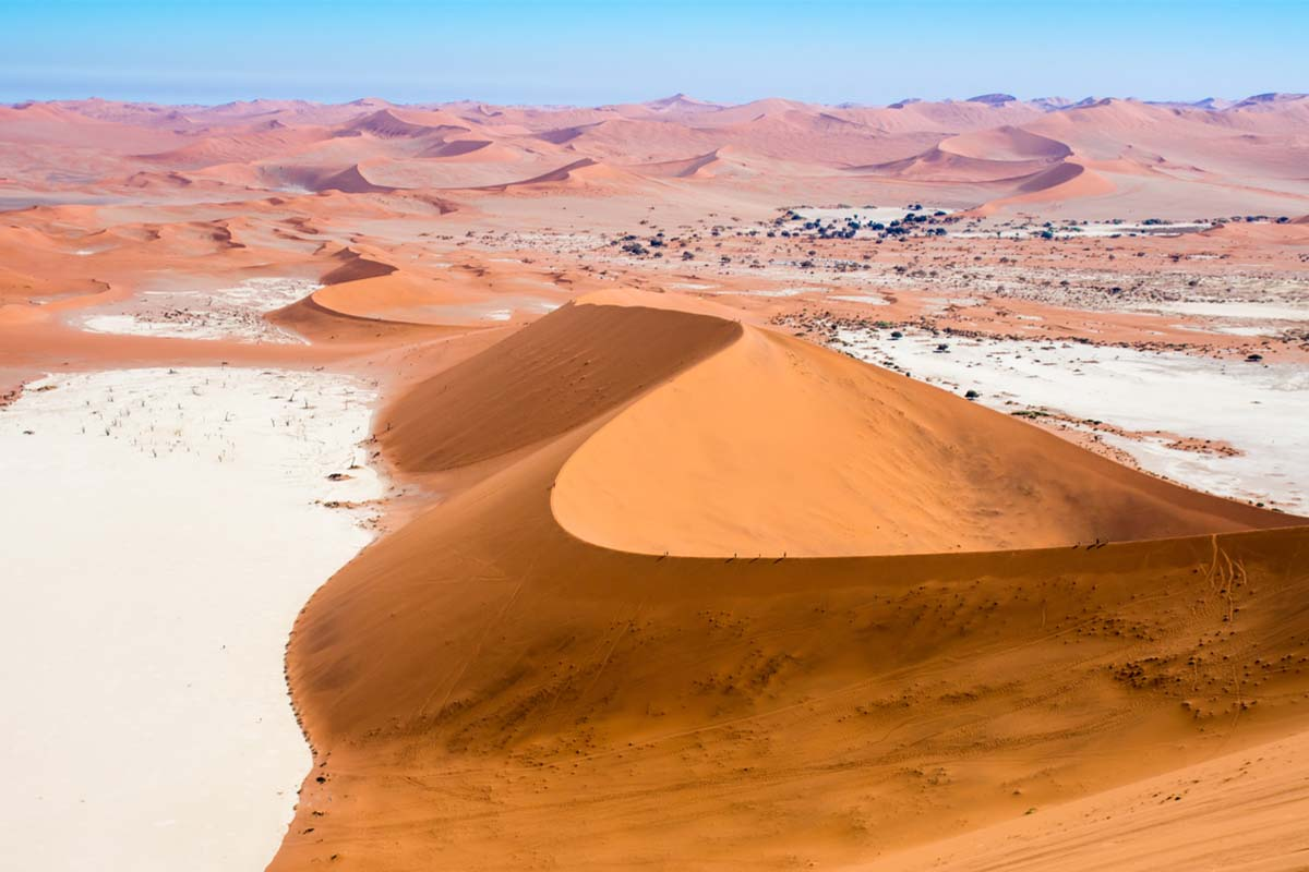 The biggest dune in the Namib Desert in Sossusvlei, Namibia