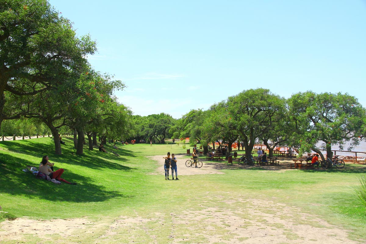 Costanera Sure, the ecological reserve in Buenos Aires