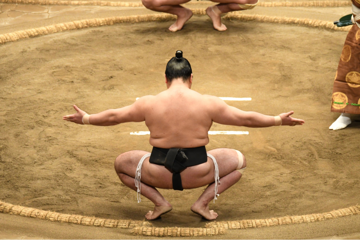 Learn more about sumo wrestling at the sumo arena