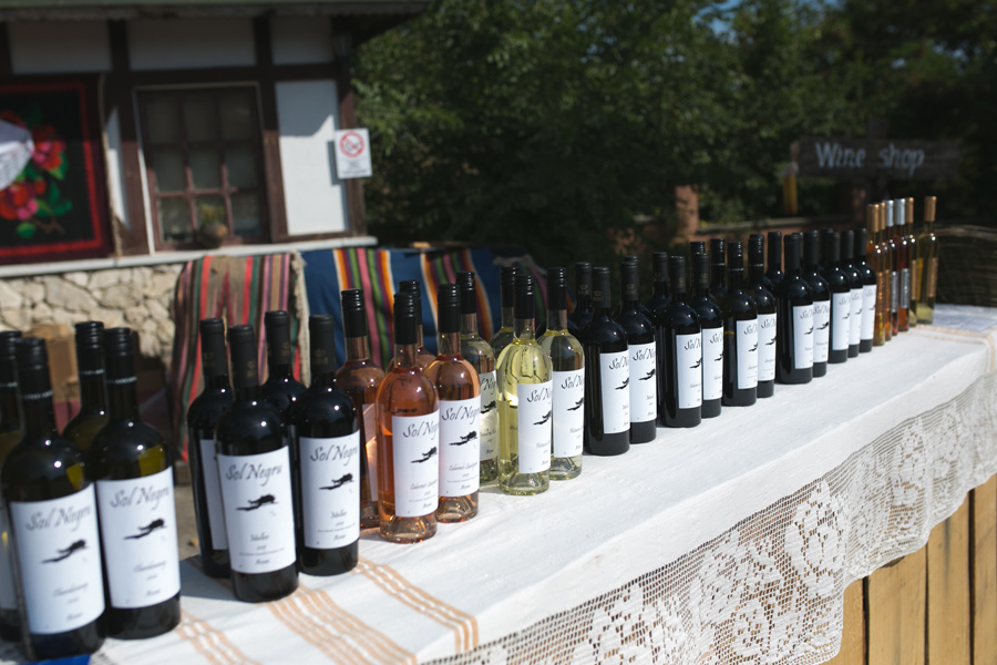 Taste authentic Moldovan wine at Asconi Winery
