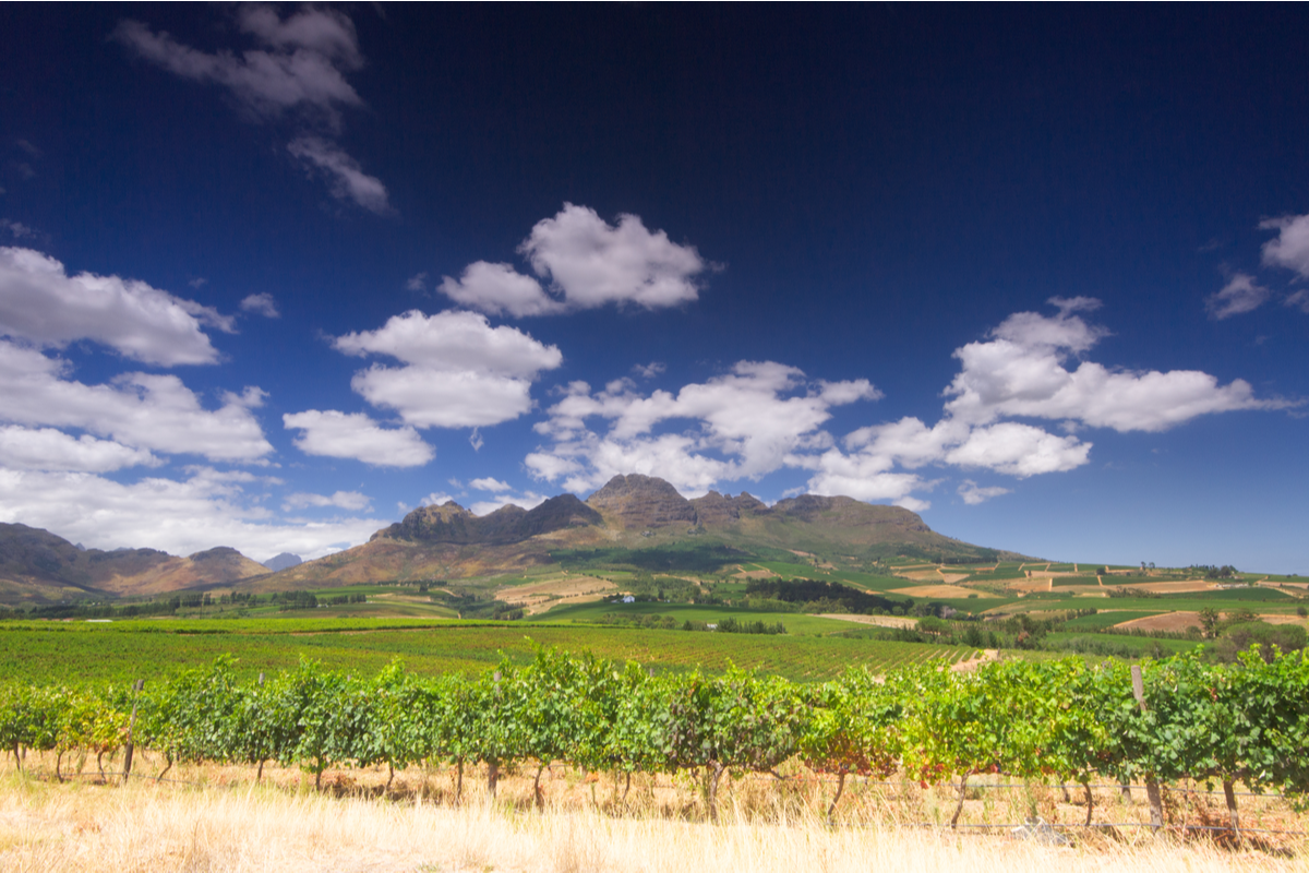 View of Cape Winelands South Africa railway journeys