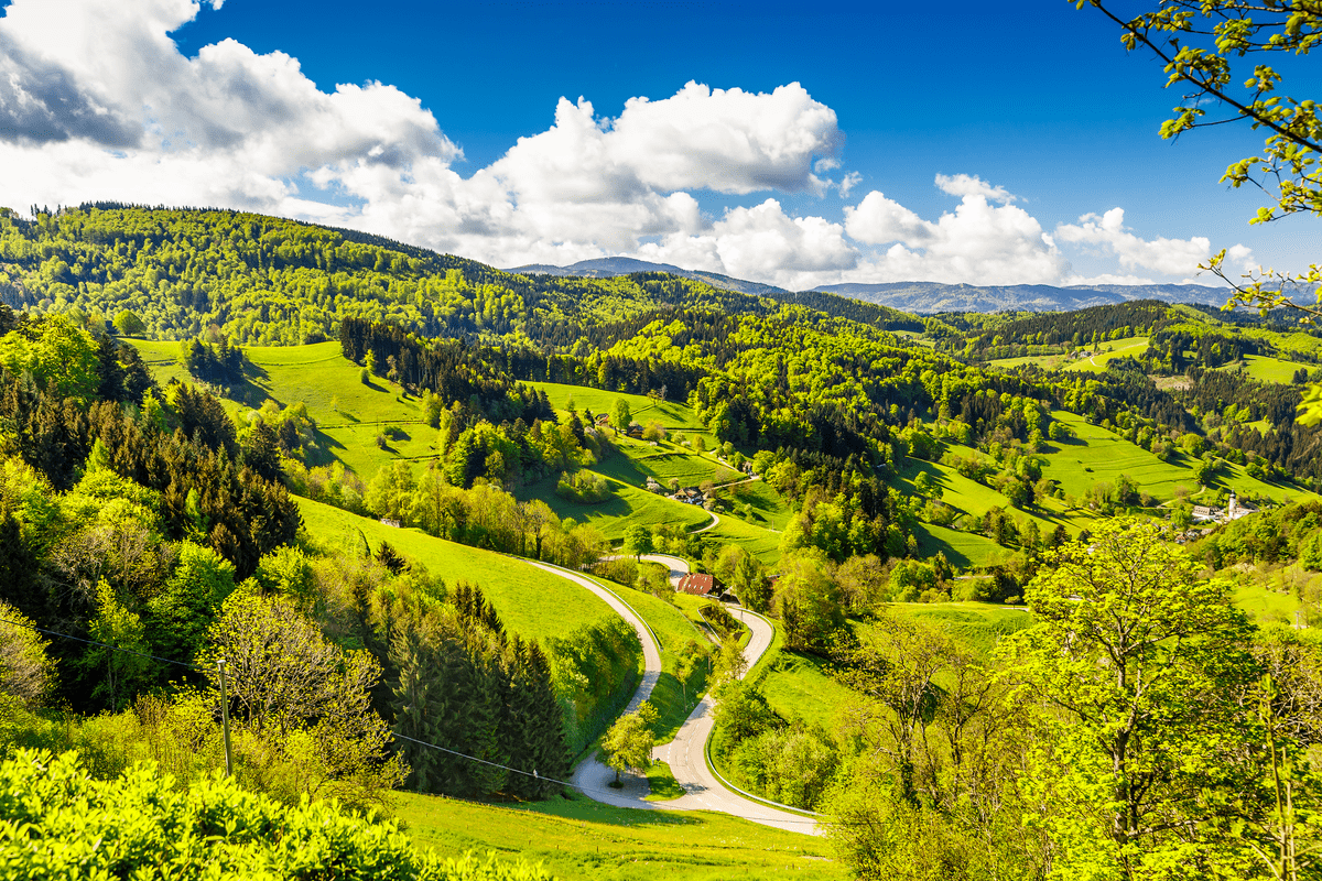 Countryside view Germany Black Forest Europe National Parks